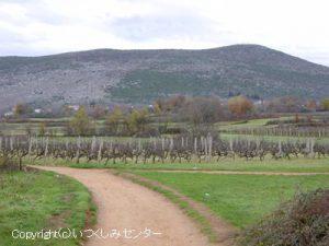 メジュゴリエ村
