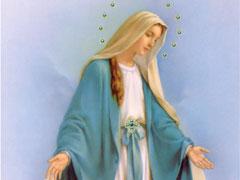 アイキャッチ用 無原罪の聖母