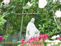 聖母像(2017年5月18日 メリノールにて)