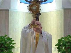 教皇様、ご聖体で視聴者を祝福される