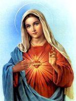 聖母の御心