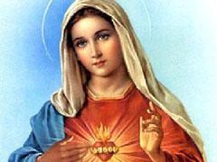 アイキャッチ用 聖母の御心