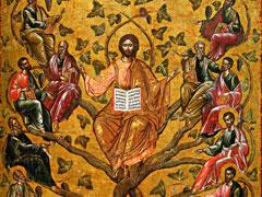 アイキャッチ用 真のぶどうの木であるキリスト