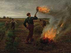 アイキャッチ用 小麦畑での毒麦の焼却
